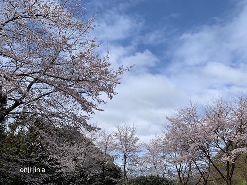 写真 2020-03-29 9 24 15.jpg